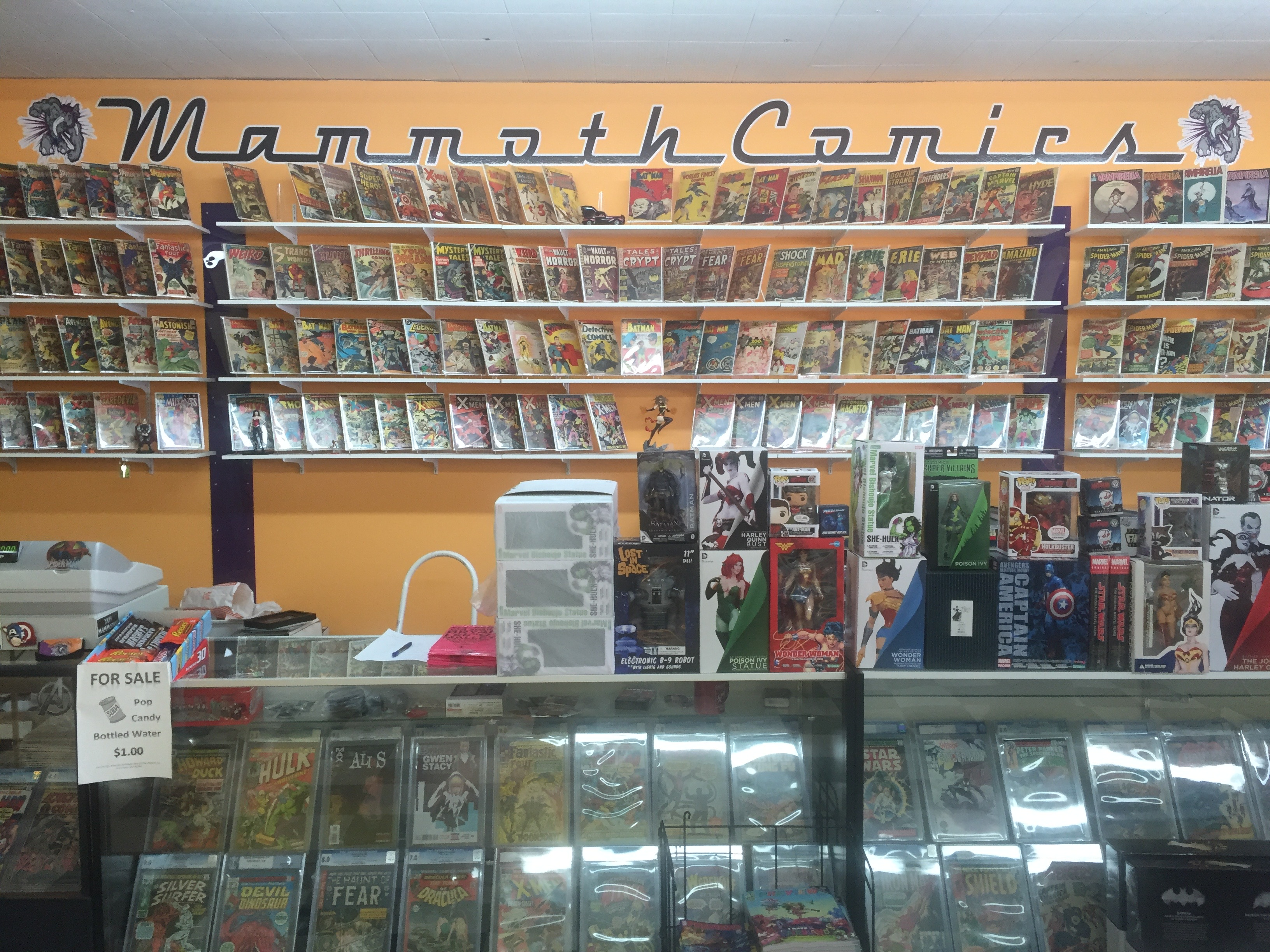 "<span  class=""uc_style_uc_tiles_grid_image_elementor_uc_items_attribute_title"" style=""color:#ffffff;"">The Back Wall at Mammoth Comics</span>"